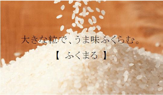fukumaru1